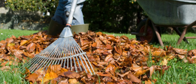 Autumn Lawn And Landscaping In Indiana Landscape Solutionns