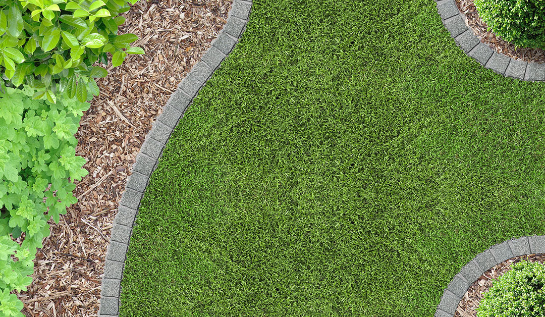 Spring Lawn Care Checklist – How to Prepare Landscaping for the Spring Warm-Up