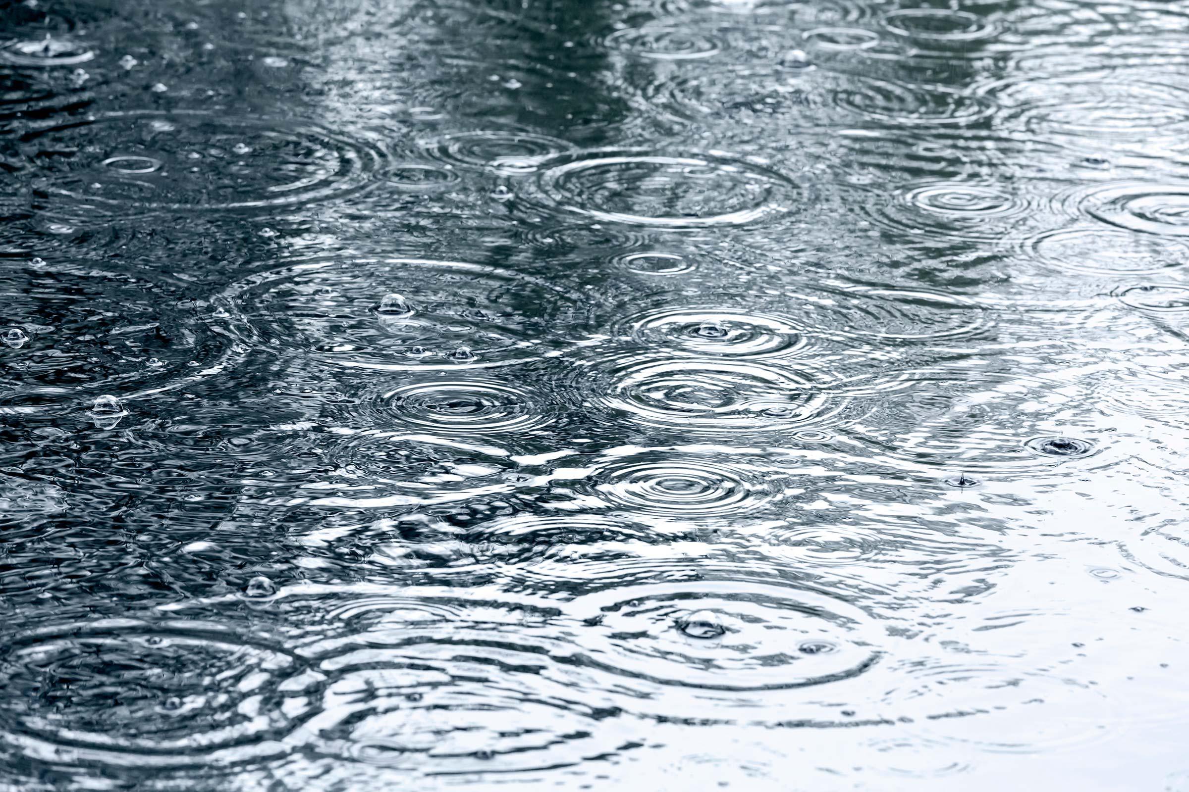 Rain, Rain, Go Away - ...